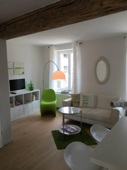 Wohnbereich mit Sofa, TV, Büchern
