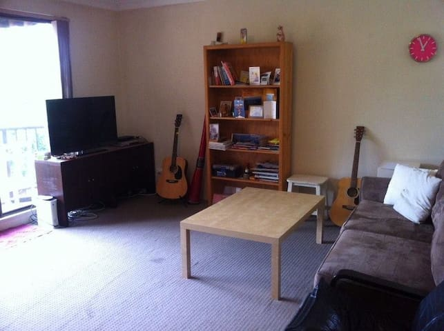 Cheap n Cheerful 2-bed Pyrmont - Pyrmont - Apartment