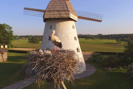Araisi Windmill unique blend of history and nature