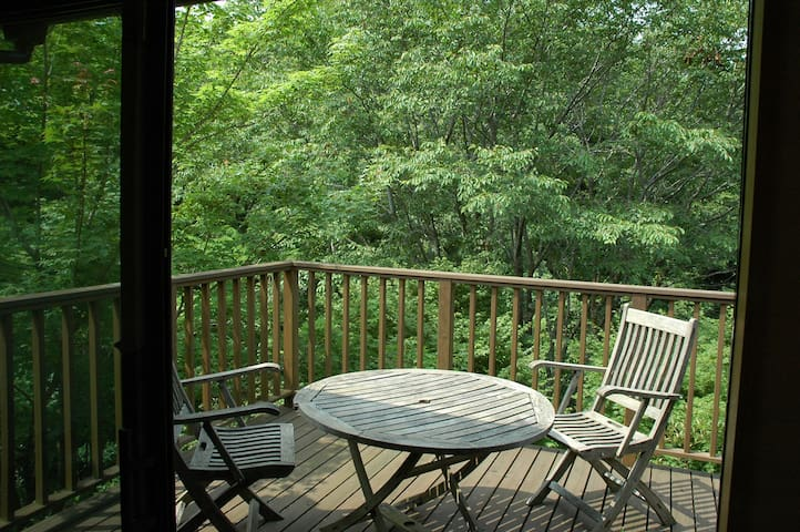 Secluded forest cottage close to beautiful beaches