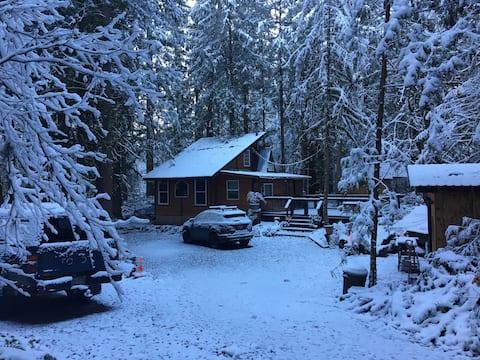 Quaint Cedar Cabin near Mt. Hood - dog friendly