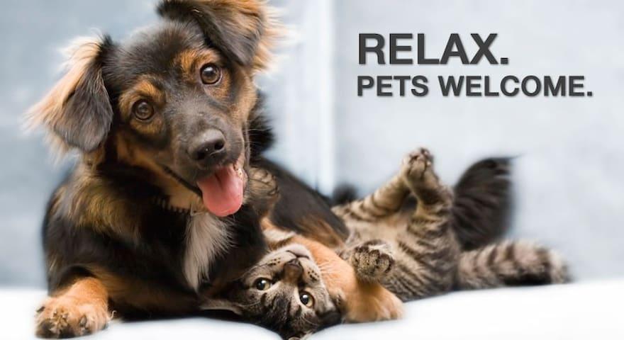 Pet Fiendly