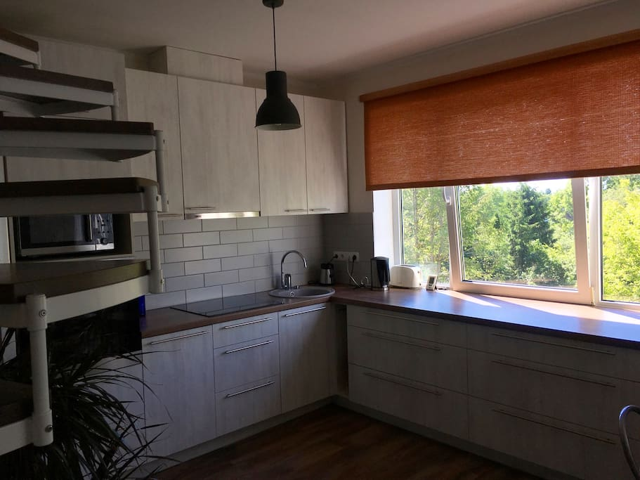 Open kitchen with appliances. Oven, stove, microwave, toaster, blender, boiler