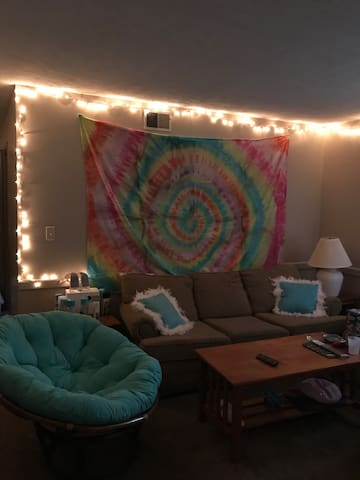 Cozy Apt on ISU Campus