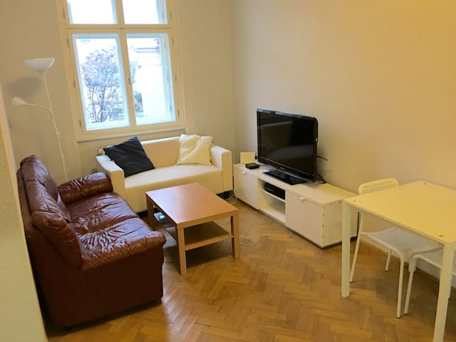 Small apartment in the center