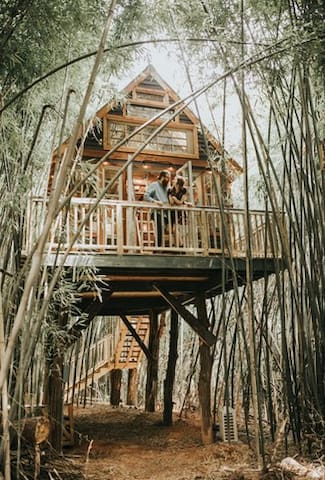 Vic Bonvicini's beautiful wedding capture.  The treehouse is honored by people celebrating special occasions like weddings, engagements, anniversaries, and birthdays.