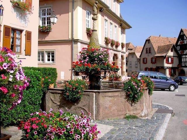 La Maison de Marthe - Dambach-la-ville - Talo