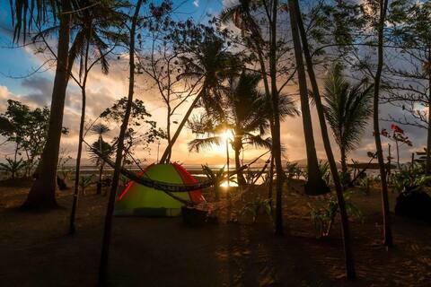 Sea view single tent