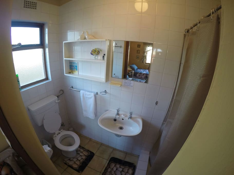 Clean shower and toilet area.