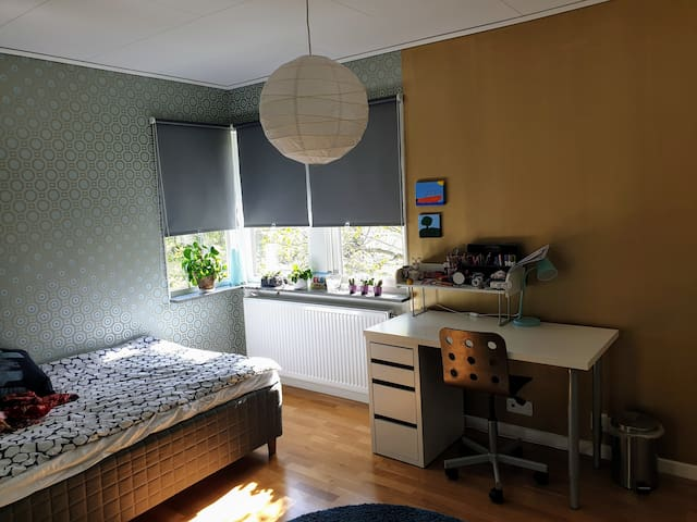 Room 2 (bed 120×200 cm)