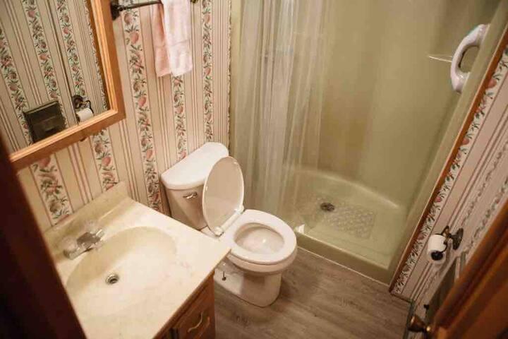 Full Bath.  No tub.