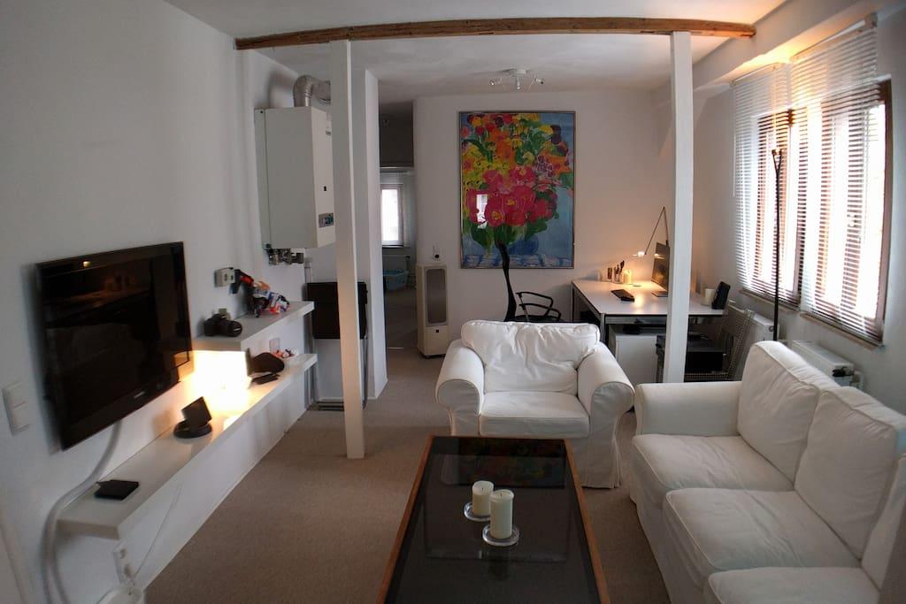 modern eingerichtete altbau wohnung zentral in hd wohnungen zur miete in heidelberg baden. Black Bedroom Furniture Sets. Home Design Ideas