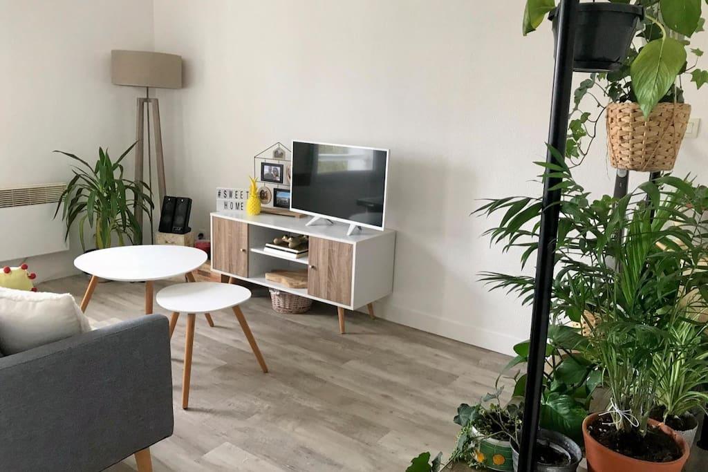 chambre cosy avec terrasse proche jardin public appartements louer bordeaux nouvelle. Black Bedroom Furniture Sets. Home Design Ideas