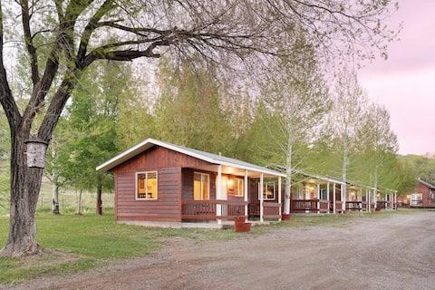 Aspen Cabin in the Cimarron Valley