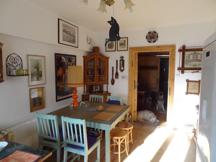 Kuchnia z jadalnią/Kitchen dining room