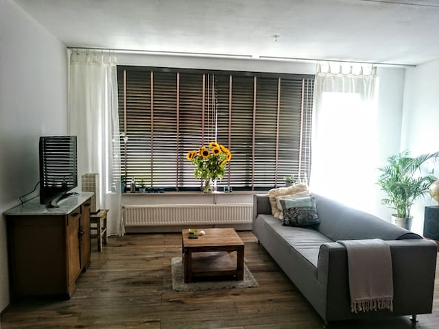 Great comfortable apartment + free parking