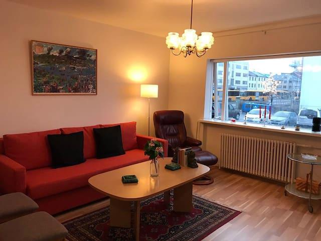 1 bedroom in the heart of downtown - Reykjavík - Lägenhet
