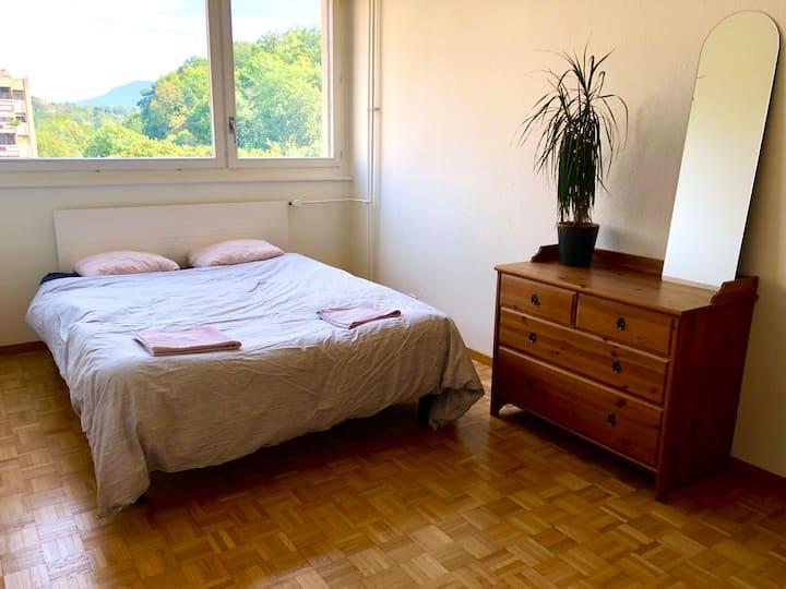Cozy Room in Carouge, Geneva