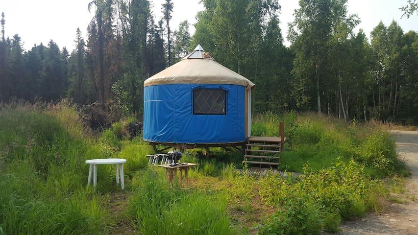 Talkeetna Moose Meadows yurt rentals