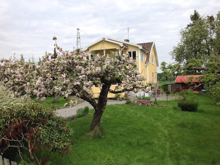 Charmig villalägenhet 150 m från Vänerns strand