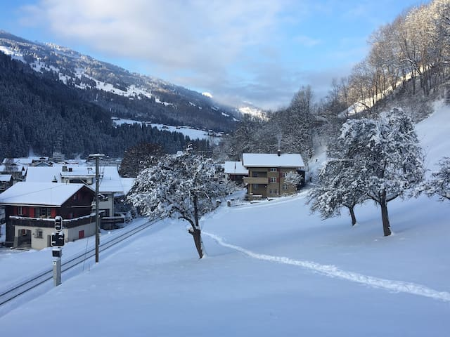 Idyllic 3-rooms apartment near Klosters (flat A) - Küblis - Lägenhet