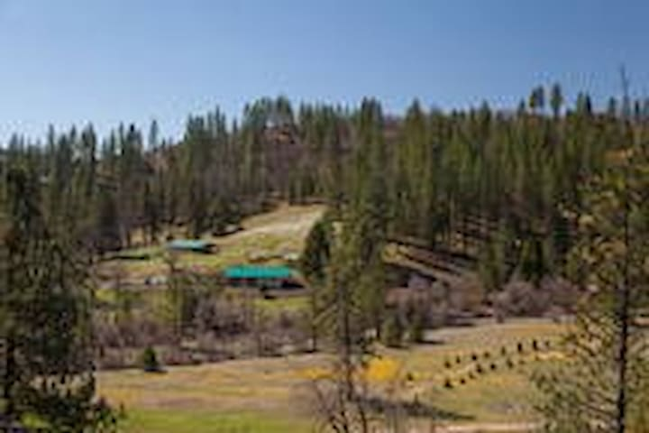 Large Group Lodge  Near Yosemite - Coulterville - House