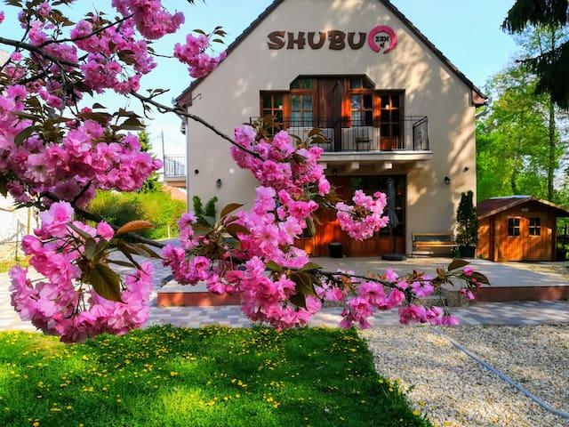 Shubu Zen A Nyugalom Szigete