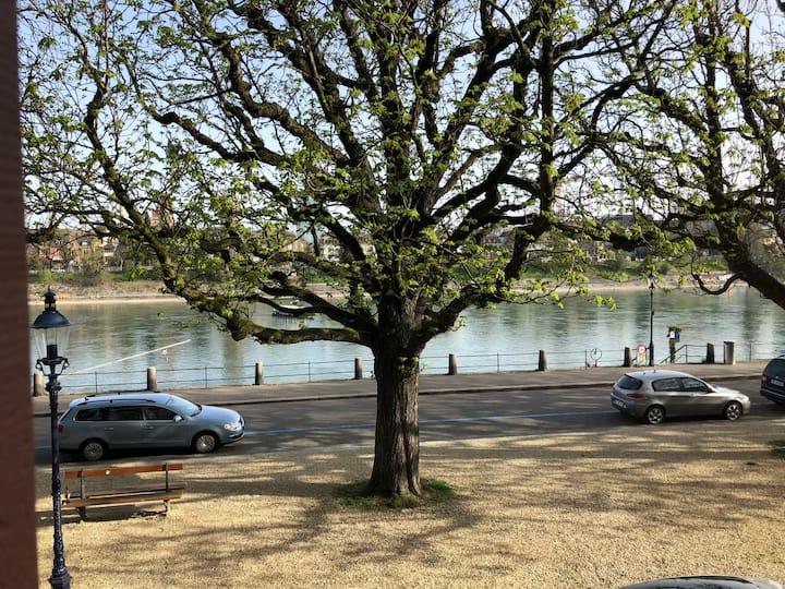 Rhein view apartment