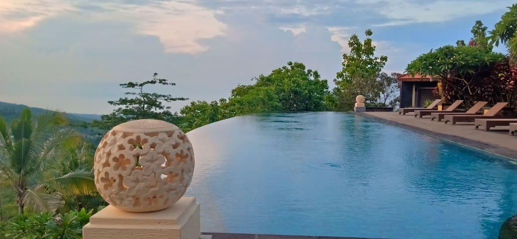 Lovina Hillside Villa- gorgeous infinity pool