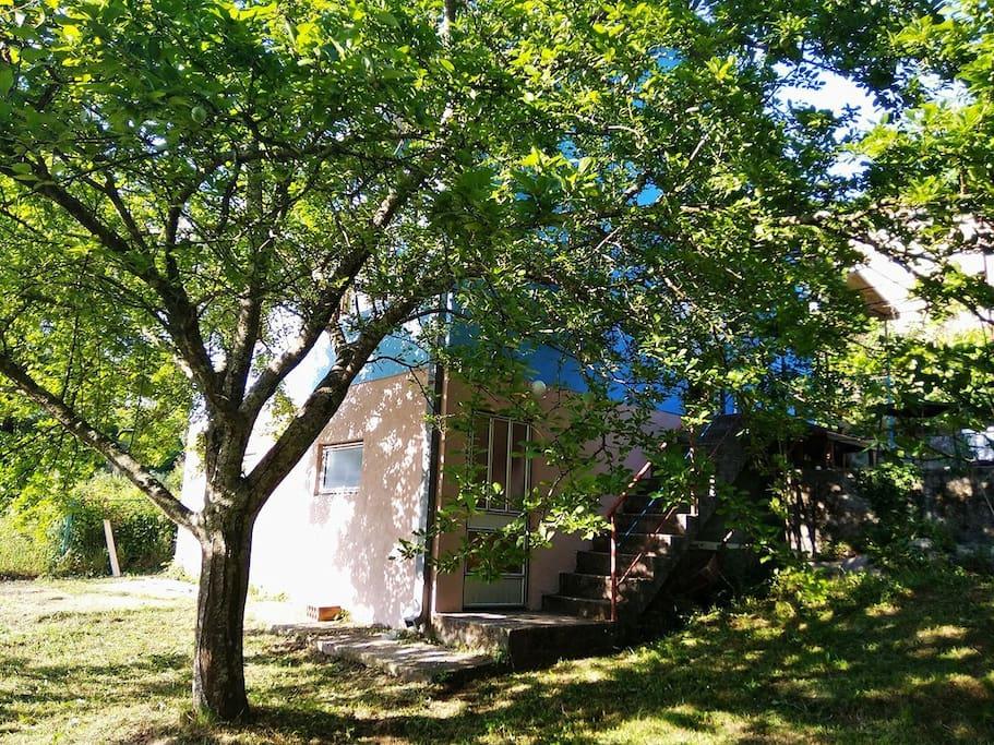 общий вид дома с нижней лужайки