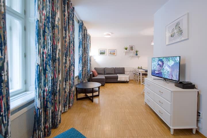 Charvatova beautiful city center apartment