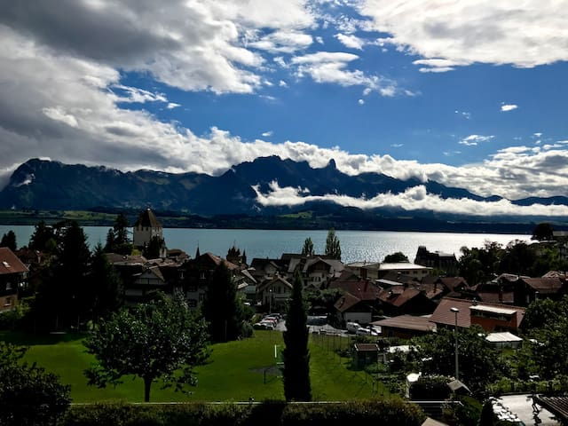 Cosy, Charming Lake View Apartment In Swiss Chalet