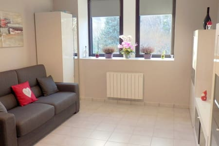 Charming studio facing the Park - Le Puy-en-Velay - Квартира