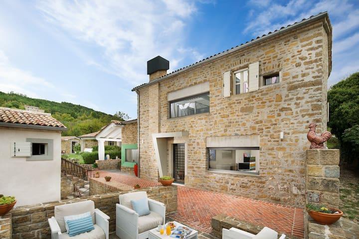 Luxury villa with pool near Motovun