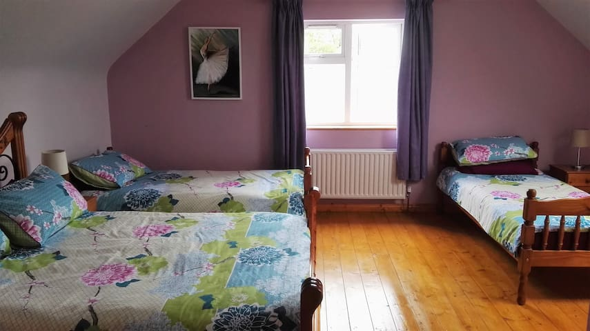 Spacious ensuite bedroom(s) Castlebaldwin - Sligo - กระท่อม