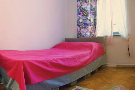 Pretty room in big sunny apartment with veranda - Huoneisto