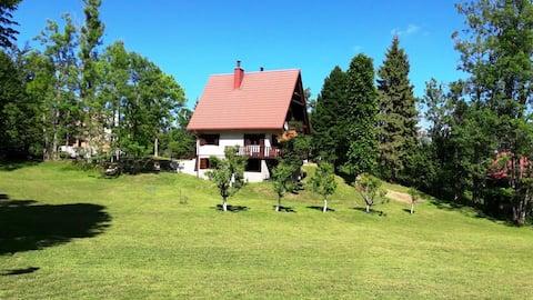 Spacious mountain house