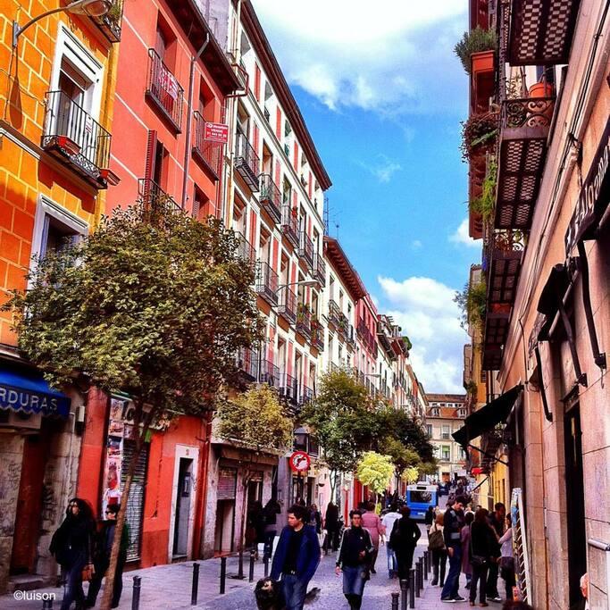 Preciosa habitaci n de lujo en barrio malasa a casas - Campings de lujo en espana ...
