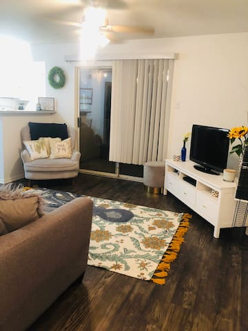 Entire apartment by DFW Airport