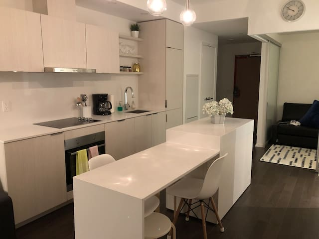 Beautiful, brand new condo in the heart of Toronto
