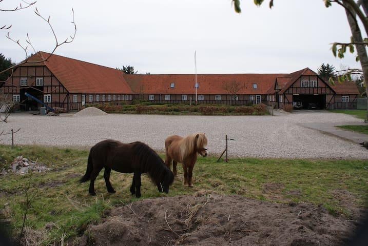 Hyggelig gård nær Nationalpark Thy