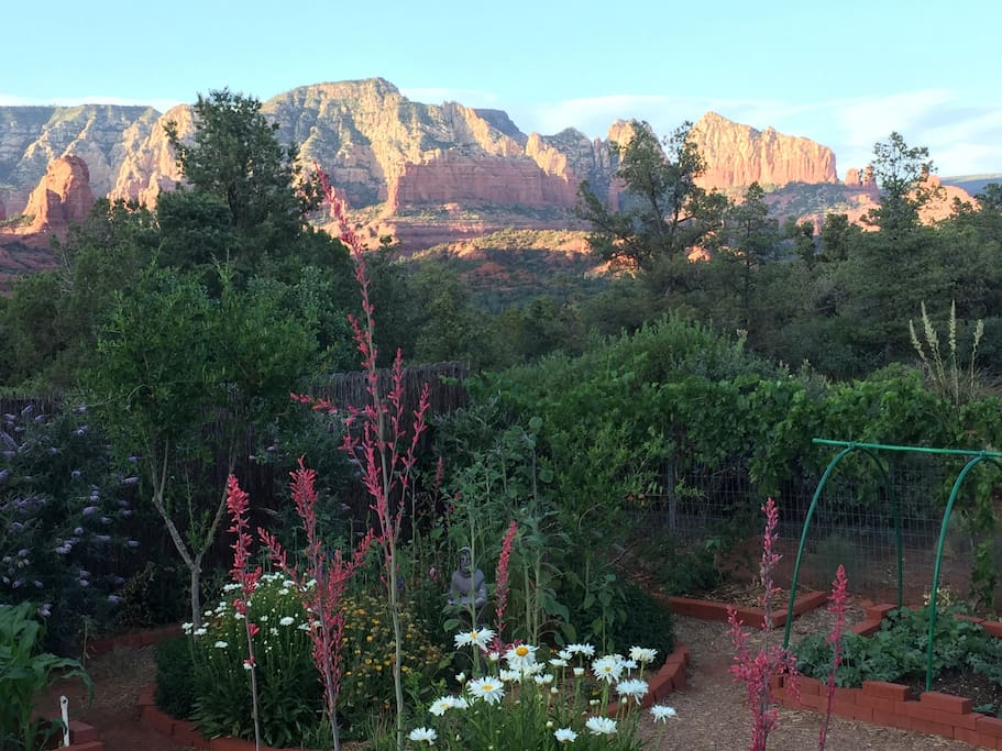 View from the backyard deck