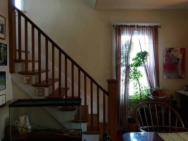 Comfortable, second floor corner room