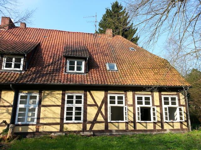 Dachzimmer mit Blick ins Grüne - Göhrde - Byt