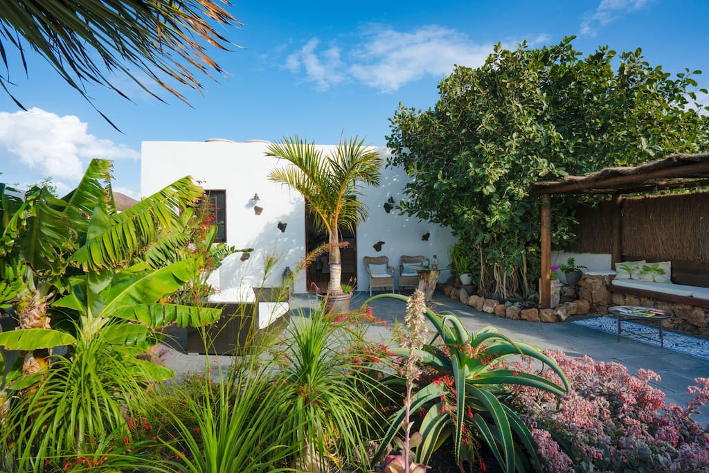 Tropical courtyard garden - totally private