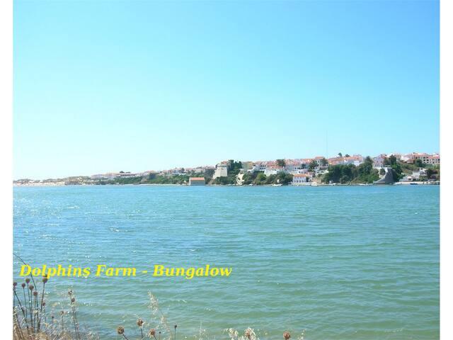 DolphinsFarm - Bungalow - Vila Nova de Milfontes - Bungalo