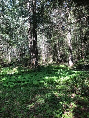 Shelly Farm Camping , Quiet & Prestine!