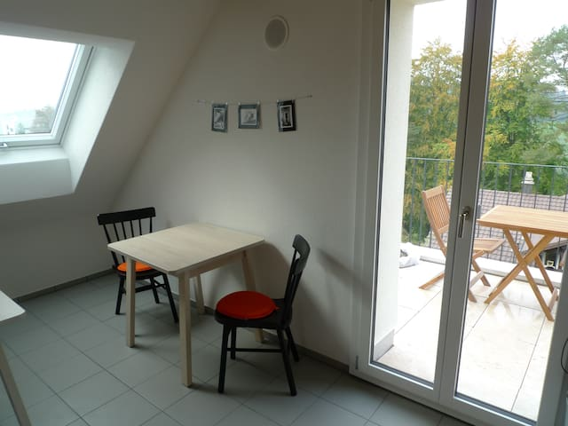 Double Bed Room in Loft above Rotsee Lake - Ebikon - Apartemen