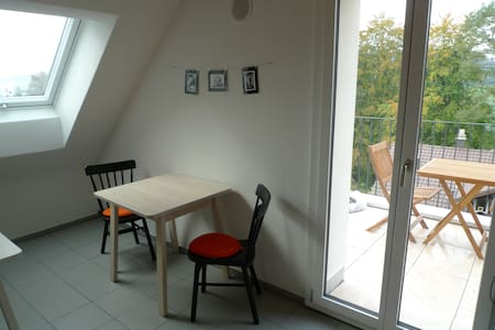 Double Bed Room in Loft above Rotsee Lake - Ebikon - Apartamento