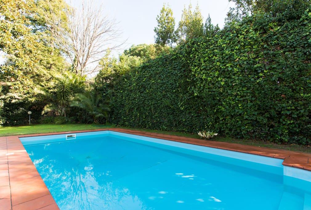 Casa Laetitia_The Pool 2
